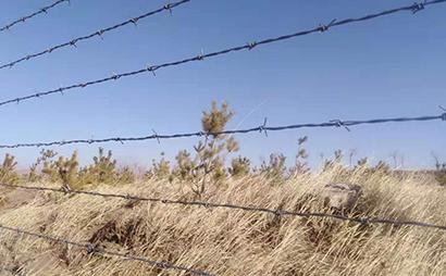 圈地刺铁丝围栏
