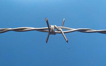 双股热镀锌刺绳(铁蒺藜)