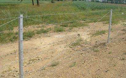 高速公路刺钢丝隔离栅