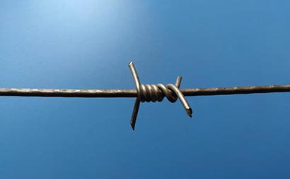 单股螺旋钢丝刺网(蛇腹型)