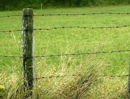 刺线围栏.jpg