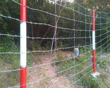 刺绳围栏.jpg