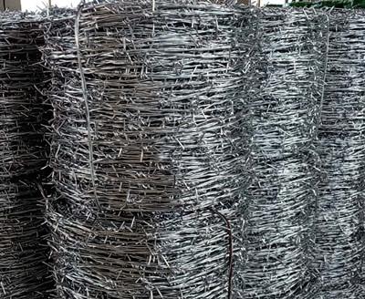 热镀锌刺绳.jpg
